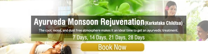 Ayurveda monsoon rejuvenation